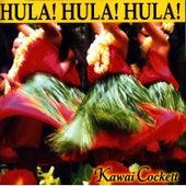 Classic Hula by Darlene Ahuna