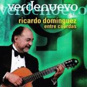 Verdenuevo (entre cuerdas) by Ricardo Domínguez