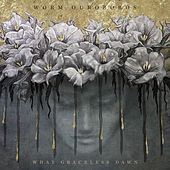 What Graceless Dawn by Worm Ouroboros