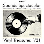 Sounds Spectacular: Vinyl Treasures, Volume 21 by Various Artists