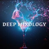 Deep Mixology, Vol. 1 (Finest Deep & Chill House Tunes) by Various Artists