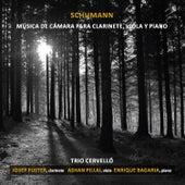 Schumann: Música de Cámara para clarinete, viola y piano by Trio Cervelló