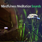 Mindfulness Meditation Sounds – New Age Relax, Mind Calmness, Soft Music to Rest, Meditation & Relaxation by The Relaxation