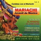 Fiesta De Exitos by Mariachi Juvenil de Mexico