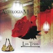 Antologia Musical by Los Trios