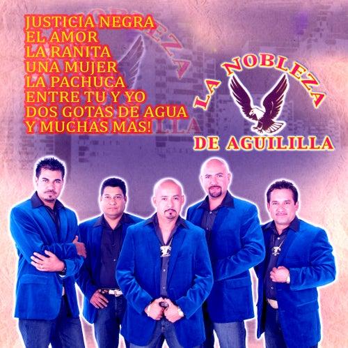 13 Temas by La Nobleza De Aguililla