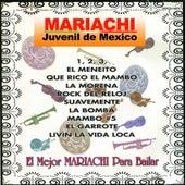 El Mejor Mariachi Para Bailar by Mariachi Juvenil de Mexico