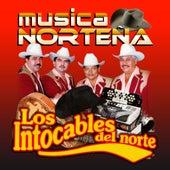Musica Nortena by Los Intocables Del Norte