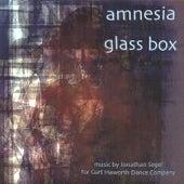 Amnesia Glass Box by Jonathan Segel