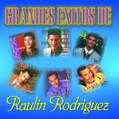 Grandes Exitos De by Raulin Rodriguez