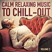 Calm Relaxing Music to Chill-Out, Vol. 2 by Various Artists