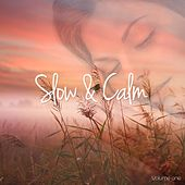 Slow & Calm, Vol. 1 (Relaxation & Harmony With Music) by Various Artists