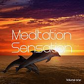 Meditation Sensation, Vol. 1 (Spiritual Down Beats) by Various Artists
