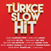 Türkçe Slow Hit by Various Artists