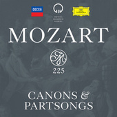 Mozart: Canons & Partsongs von Various Artists