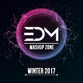 EDM Mashup Zone Winter 2017 by D'Mixmasters