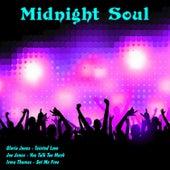 Midnight Soul von Various Artists
