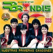 Nuestras Primeras Canciones, Vol. 2 by Grupo Bryndis
