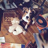 Feeling Playful? (Canine Companion Edition) by Various Artists