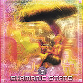 Shamanic State by Various Artists