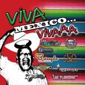 Viva Mexico 15 Temas by Various Artists