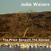 The Place Beneath the Silence by Julie Waters