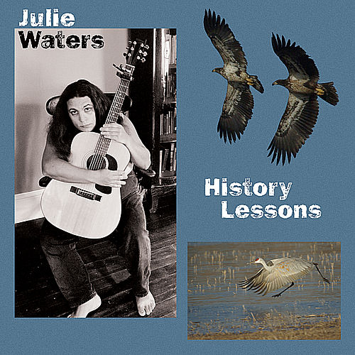 History Lessons by Julie Waters