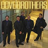 Life by The Dove Brothers