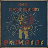 The Covers, Vol. 2 - EP by The Brothers Comatose