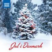 Jul i Danmark by Various Artists