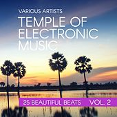 Temple Of Electronic Music (25 Beautiful Beats), Vol. 2 by Various Artists