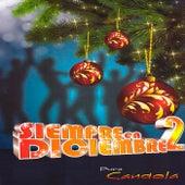Siempre en Diciembre 2 by Various Artists