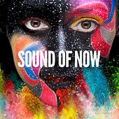Sound of Now, Vol. 1 (Relaxing Chill Out Sounds) by Various Artists