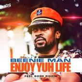 Enjoy Yuh Life by Beenie Man