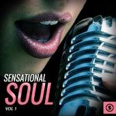 Sensational Soul, Vol. 1 by Various Artists