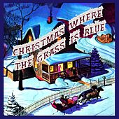 Christmas Where the Grass Is Blue by Various Artists