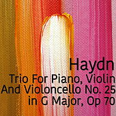 Haydn Trio For Piano, Violin and Violoncello No. 25 in G Major, Op 70 by The St Petra Russian Symphony Orchestra