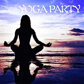 Yoga Party by Various Artists