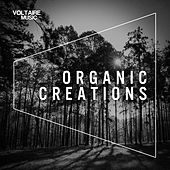 Organic Creations (Issue 1) by Various Artists