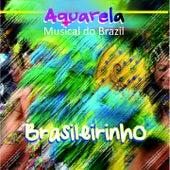 Aquarela Musical do Brazil: Brasileirinho by Various Artists