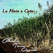 La Mata 'e Caña (Colombia Tierra Querida) by Various Artists