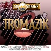 Tromazik, vol. 2 von Various Artists