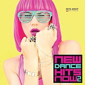 New Dance Hits Now, Vol. 2 by Various Artists