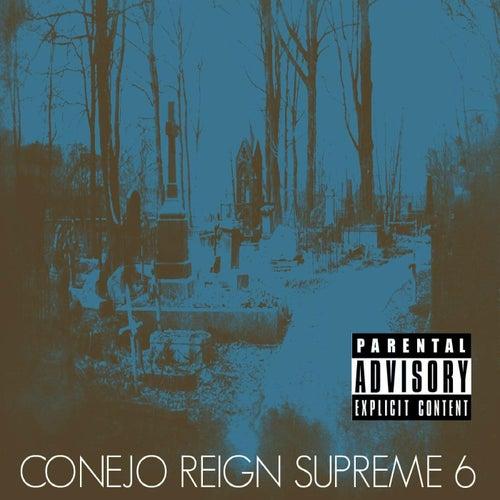 Reign Supreme 6 by Conejo