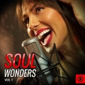 Soul Wonders, Vol. 1 by Various Artists
