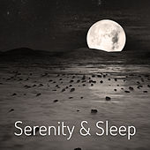 Serenity & Sleep – Music for Relaxation, Deep Meditation, Classical Chillout, Healing Songs, Peaceful Mind by Natural Sleep Aid Collective