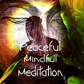 Peaceful Mindful Meditation by Meditation Music Zone