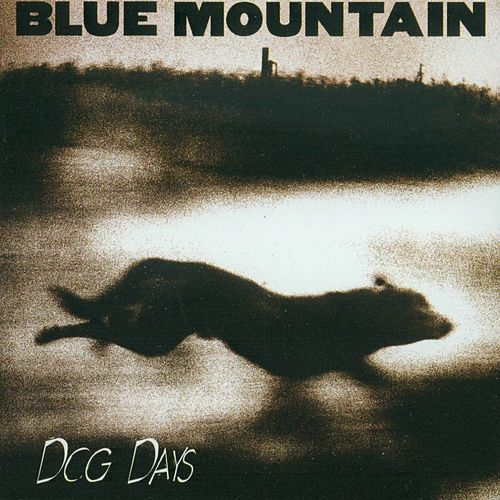Dog Days by Blue Mountain