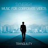 Synergy: Music for Corporate Videos - Tranquility by Various Artists