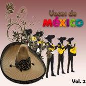 Voces de México, Vol. 2 by Various Artists